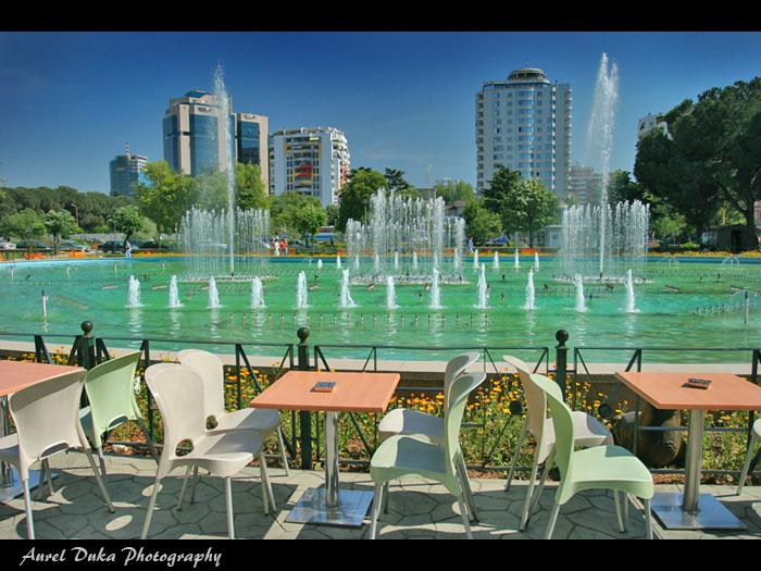 Arnavutluk'ta Çalışan Yabancıların Görüşleri