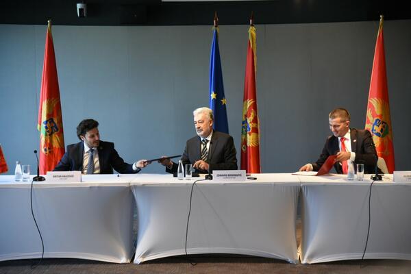 Karadağ'da Arnavut Desteği ile Sırp Hükümeti Kuruluyor.